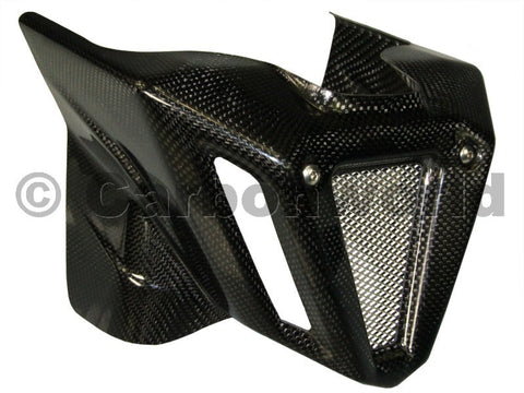 Carbon Fiber Belly Pan 696-796-1100