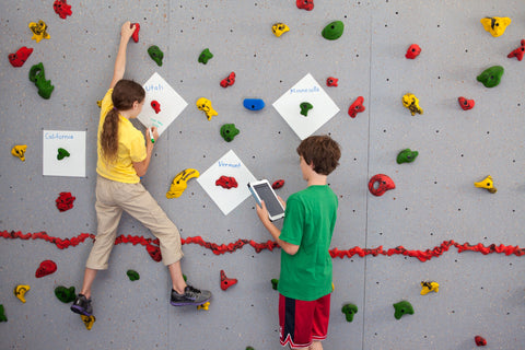 Children learning while climbing using Discovery Plates on the climbing wall