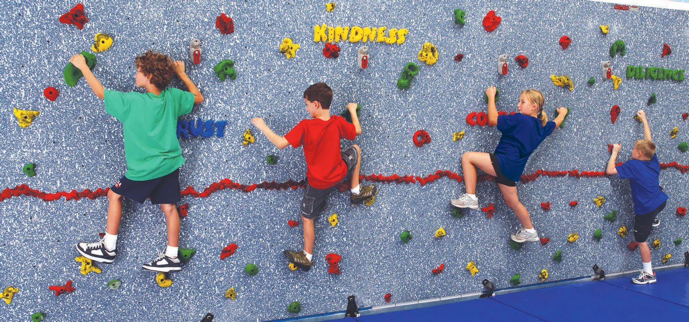 Everlast climbing traverse climbing wall and hand hold products magna climbing wall gumiabroncs Choice Image