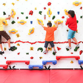 Adaptive Rock Climbing Holds Climbing Wall