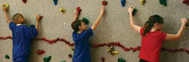 Welcome to the Wall - Climbing Wall Activity