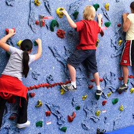 Magna Relief-Feature Climbing Wall