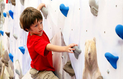 Mountain Mural Home Climbing Wall