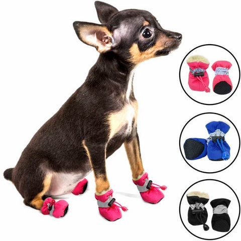 chaussons froid pluie chien