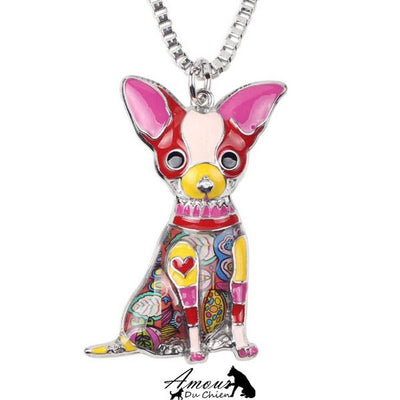 collier chien chihuahua