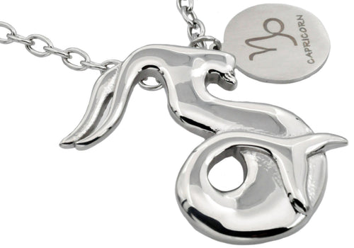 Mens Stainless Steel Zodiac Capricorn Pendant - Blackjack Jewelry