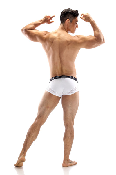 ROCCO PEEP MESH BRIEF