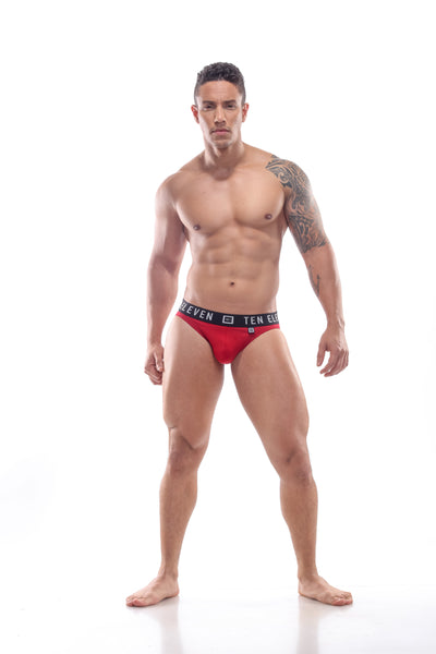 ASHER BOTTOMLESS BRIEF