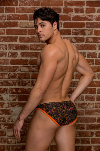 PETER ABSTRACT SWIM BRIEF