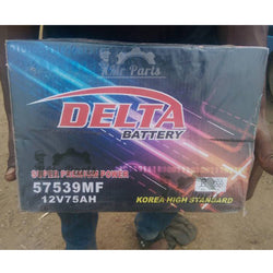 Delta 12V 75AH 57539MF Battery