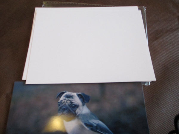 100 sheets 5 X 7 Glossy Photo Paper for lexmark kodak inkjet and laser printer