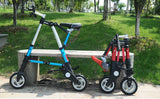 ALTRUISM A Mini Folding E-Bike - Smart-Novelty.com