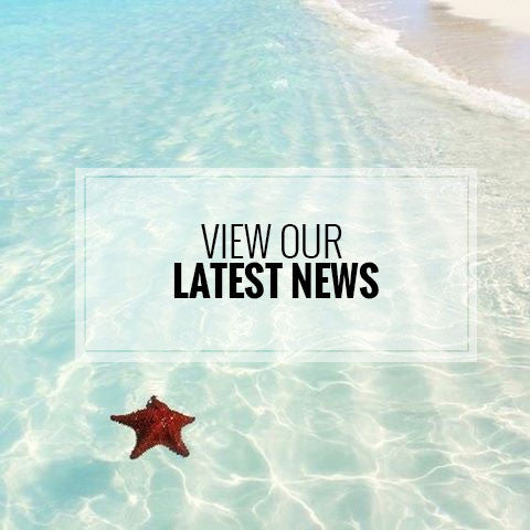 View our latest news