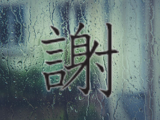 Apologize Kanji Symbol Style #5 Die Cut Vinyl Decal Sticker - Fusion Decals