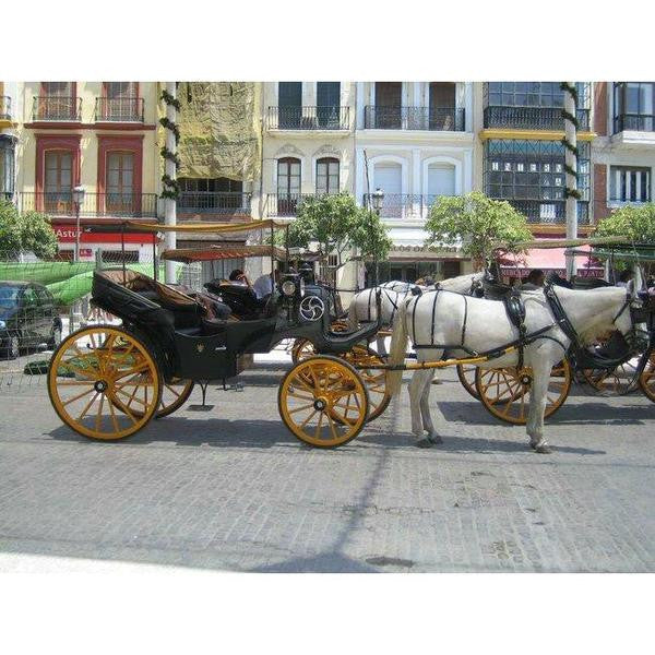 Carriage Seville