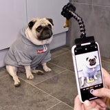 Pet Selfie Stick Holds Treats & Toys for Dog & Cat Photos