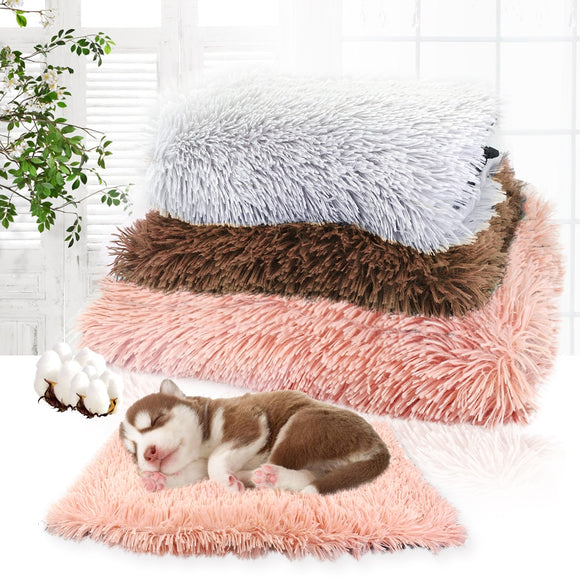 Plush Pet Bed with Thick Cotton Cushion for Dogs & Cats