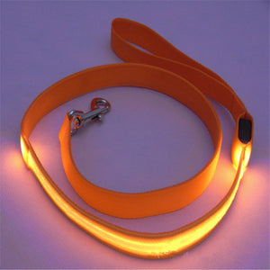 LED Nighttime Leash