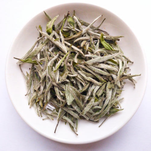 Premium Fuding Silver Needle White Tea - Sparrowtail Teas