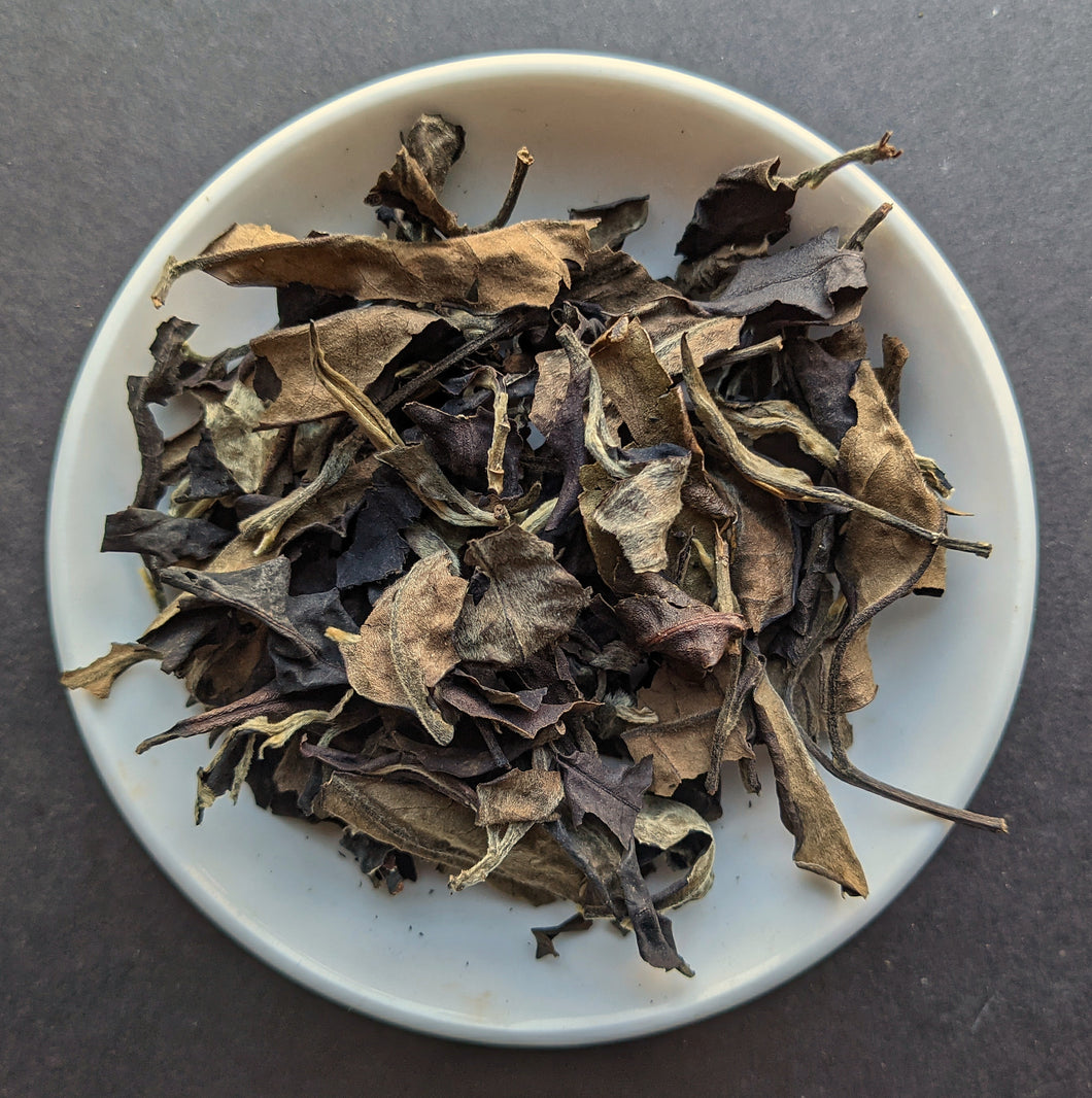 Gushu Moonlight Aged White Tea