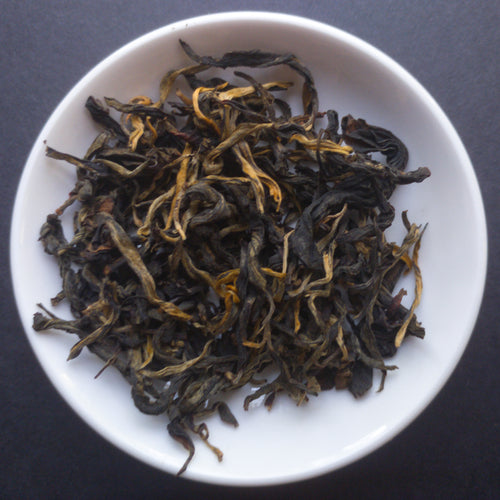 Gushu Hong Jinngu Black Tea - Sparrowtail Teas