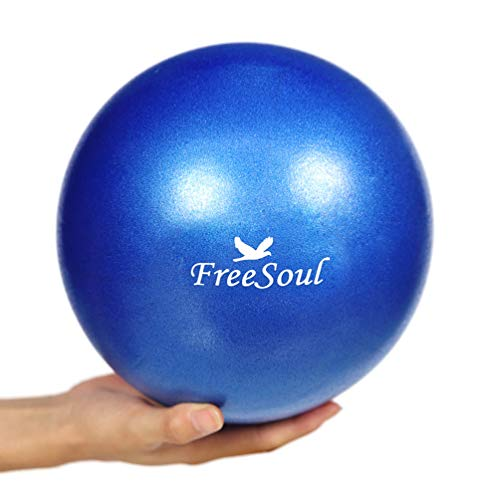 Small Pilates Ball with Pump 9 Inch Mini Bender Ball for Stability Pilates Yoga Barre Physical Therapy Core Training
