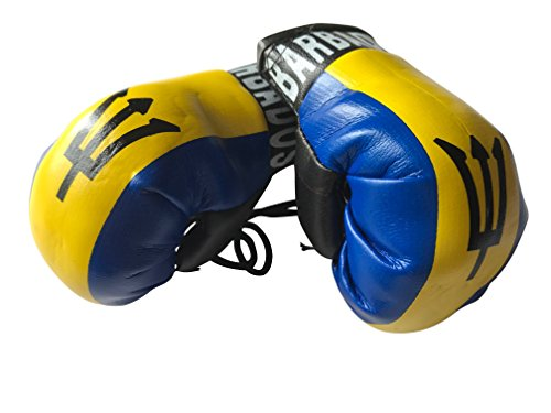 Flag Mini Small Boxing Gloves to Hang Over Car Automobile Mirror  Americas (Country: Barbados)