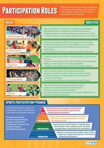 Participation Roles | Pe Posters | Laminated Gloss Paper Measuring 33