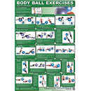 Image of Upper And Lower Body Ball Exercise Poster By Productive Fitness