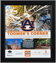 Image of Auburn Tigers Oaks at Toomer's Corner Framed 15'' x 17'' Collage with Piece of Authentic Oak - College Team Plaques and Collages