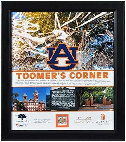 Auburn Tigers Oaks at Toomer's Corner Framed 15'' x 17'' Collage with Piece of Authentic Oak - College Team Plaques and Collages