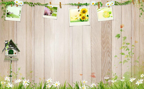 Photography Background Woods Fondos Estudio Fotografico Background For Studio Amy-Wooden-121