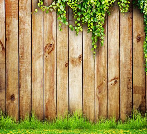 Photo Backdrop 7Ft X 10Ft Wedding Gualv Vine Grass Wall Wooden Wall Background Cm-6543