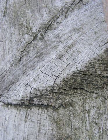 Photography Background Wood Fundo Fotografico Backdrops For Sale Amy-Wooden-092