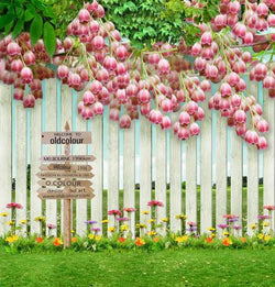 Brick Wall Backdrop Strings Of Flowers On A Wood Fence  Guardrail Foreign Indicator Cm-4326