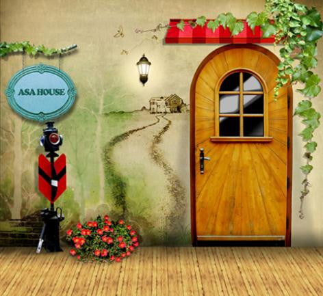 Photography Backdrops Wooden Door Painted On The Wall Of The House Leading To The  Background Cm-6265
