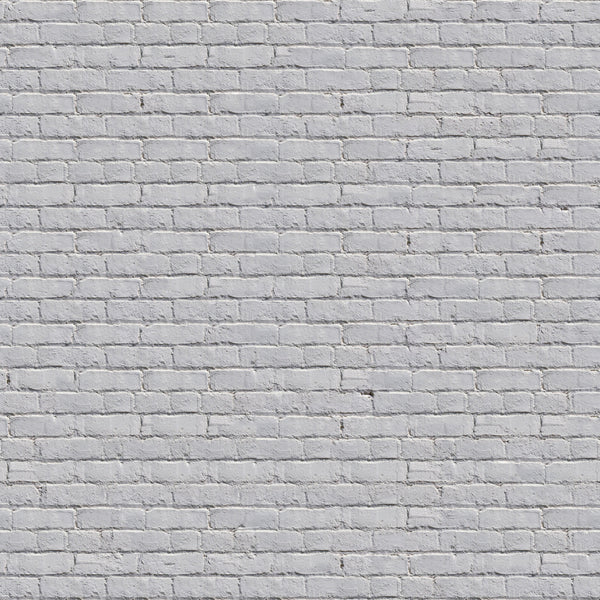 LIFE MAGIC BOX White Brick Wall Backdrops Sesame Street Birthday for The Photographer for Photo Shoot Props and Decor