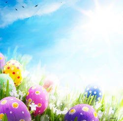 LIFE MAGIC BOX Easter Photo Background Photography Backdrops Photocall for Photo Studio 07