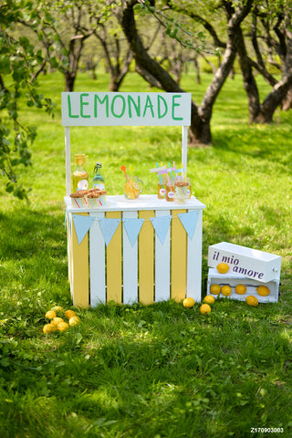 LIFE MAGIC BOX Vinyl Baby Photo Backdrop Kids Photography Background Party Backdrops Lemon Grassland