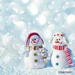 LIFE MAGIC BOX Vinyl Snow Man Cute Backgrounds Photo Backdrop Winter Photo Backdrop Studios