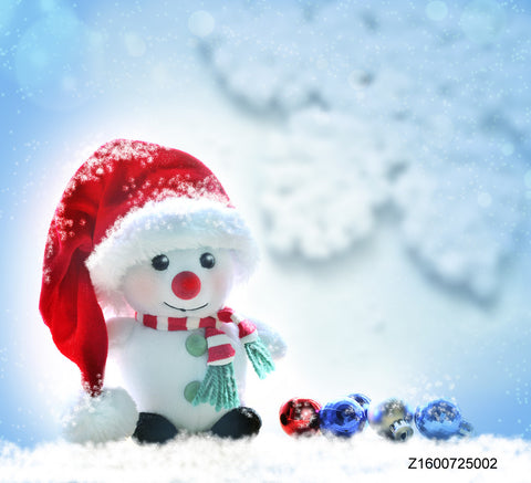 LIFE MAGIC BOX Vinyl Snow Man Cute Backgrounds Photo Backdrop Winter Photo Booth Backdrop