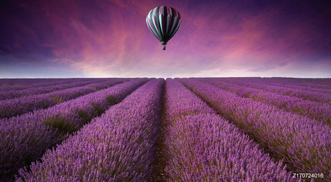 LIFE MAGIC BOX Vinyl Hot Air Balloon Cheap Photography Backdrops Cool Backgrounds Purple  Backdrop