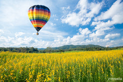 LIFE MAGIC BOX Vinyl Hot Air Balloon Cheap Photography Backdrops Yellow Flower Backgrounds Cloud