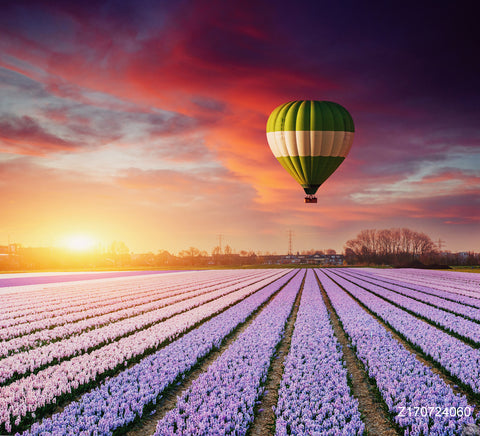 LIFE MAGIC BOX Vinyl Hot Air Balloon Cheap Photography Backdrops Flower Background Lavender Backdrop