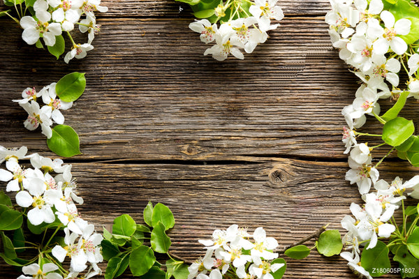 Vinyl Dark Wood White Flower Photo Backgrounds Cute Photography Backdrops Wallpapers