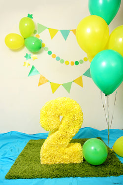 Birthday Photo Backgrounds Wallpapers Balloons Backdrops Porta Retrato Wall Decoracion 02