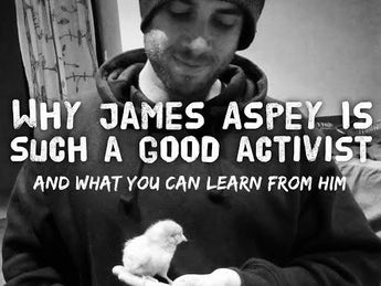 Why James Aspey is Such a Good Activist & What You Can Learn From Him