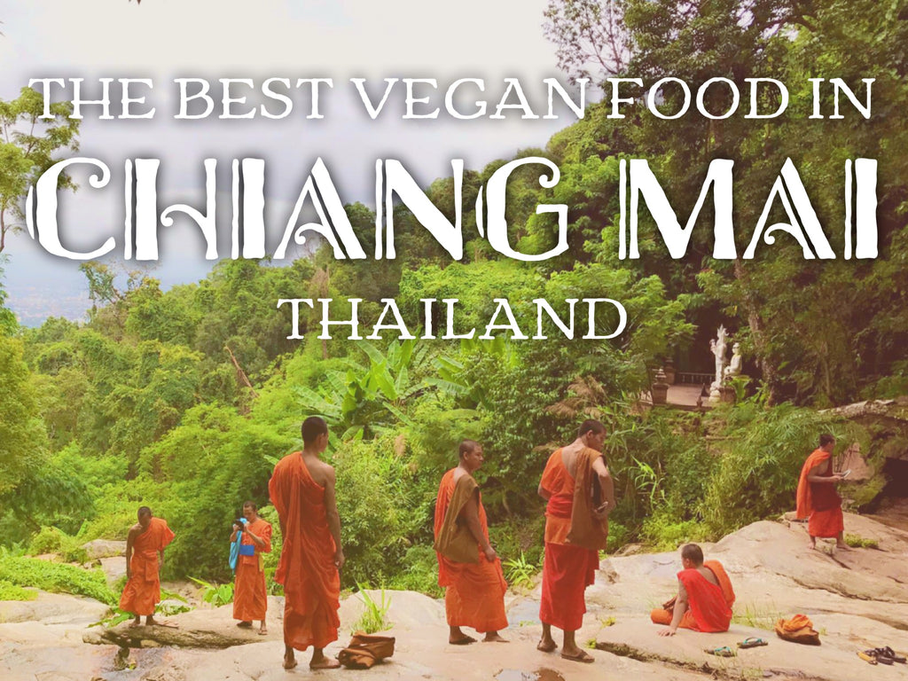The Best Vegan Food in Chiang Mai - Full Guide on VomadLife.com