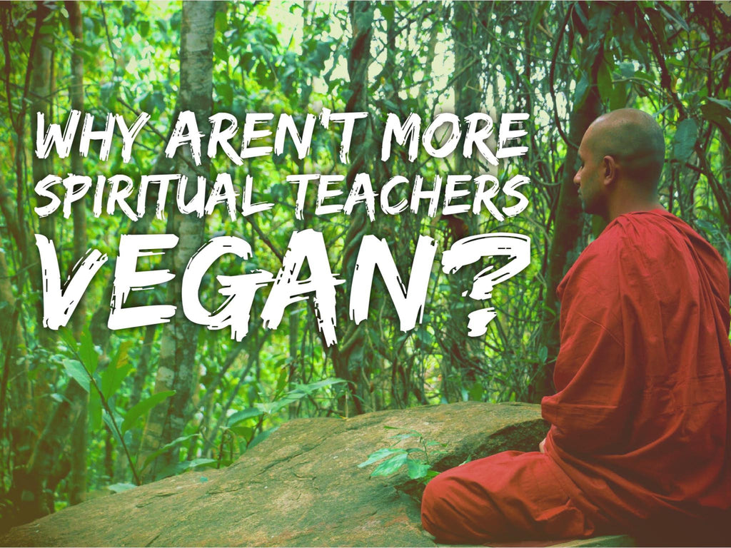 Why Aren't More Spiritual Teachers Vegan?
