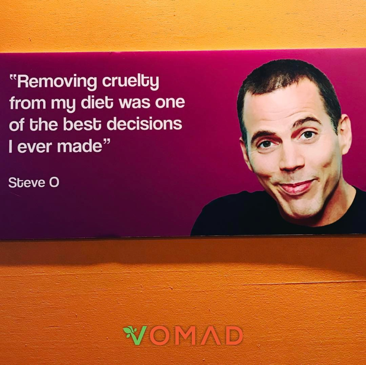 Steve-O went vegan! Taken inside Vegan Heaven 2 in Chiang Mai, Thailand - VomadLife.com